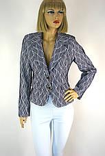 Жіночий короткий піджак з підкладкою зі знижкою Сularium, фото 2