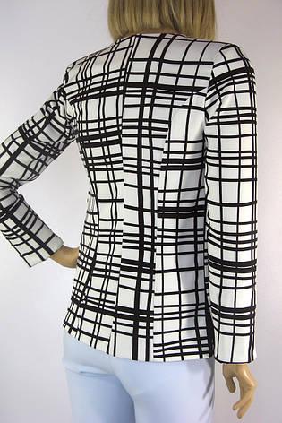 Короткий жіночий піджак в клітинку Podium , фото 2