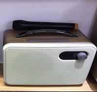 Микрофон караоке D8