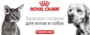 Royal Canin - корма для собак и кошек