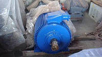Электродвигатель 160 кВт 1000 об АИР355S6, АИР 355 S6, АД355S6, 5А355S6, 4АМ355S6, 5АИ355S6, 4АМУ355S6, А355S6
