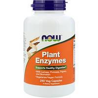 Now Foods, Рослинні ензими, 240 рослинних капсул