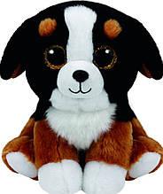 М'яка іграшка TY Собака Roscoe