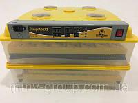 Инкубатор автоматический Теплуша EUROPE MAXI 162 с авторегулировкой влажности