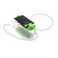 """Игрушка на солнечной батарее """"Солнечный кузнечик"""""""