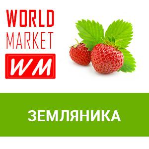 WM Земляника