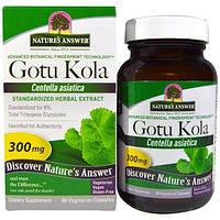 Nature's Answer, Готу кола, стандартизований трав'яний екстракт, 300 мг, 60 капсул вегетаріанських