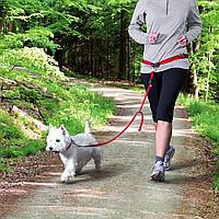 Trixie TX-12765 поясной ремень с поводком для собак