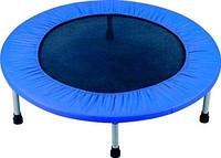 Детский спортивный батут Mini Jump II E 61-097 (122см)