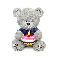 Мягкая игрушка Lava Медвежонок Ники с тортом 21,5 см (LA8786K)