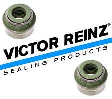 Сальники клапанов Daewoo Leganza Victor Reinz (VR 12-31306-12)