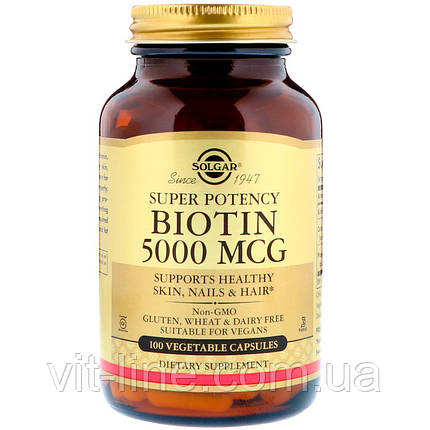 Solgar, Биотин, 5000 мкг, 100 вегетарианских капсул, фото 2