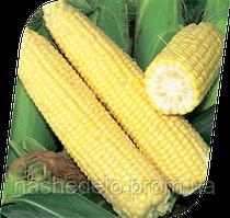 Сигнет Ф1 5000 сем. кукуруза Семенис