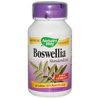 Nature's Way, Босвеллия, стандартизована, 60 таблеток