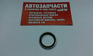 Шайба металлическая с уплотнением Д=20