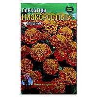 Бархатцы низкорослые Красные семена цветы, большой пакет 3г
