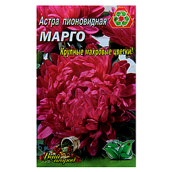 Астра Марго красная пионовидная семена цветы, большой пакет 3г