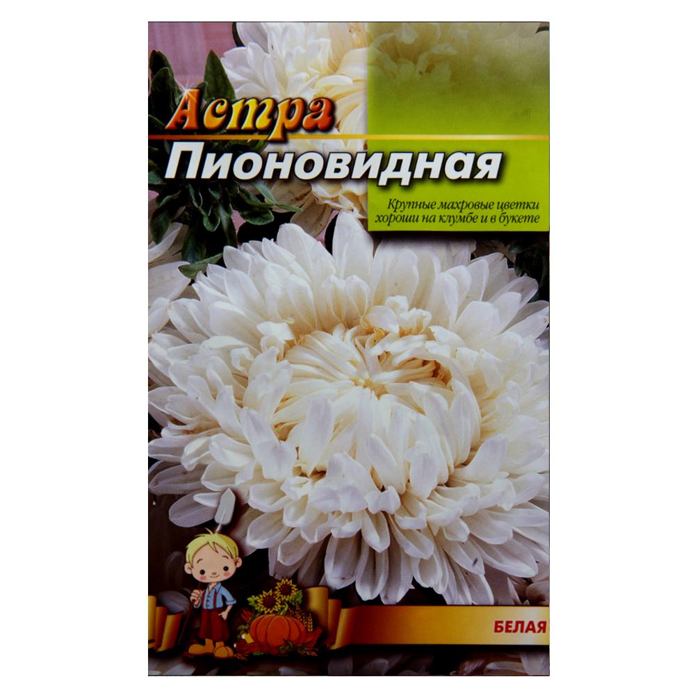 Айстра Біла піоновидна насіння квіти великий пакет