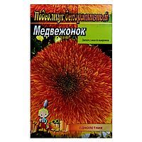 Подсолнух декоративный Медвежонок семена цветы, большой пакет 5г