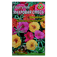 Портулак Махровая смесь однолетник семена цветы, большой пакет 3г