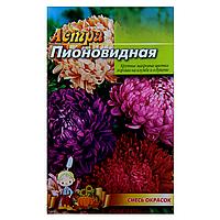 Астра Смесь красок пионовидная семена цветы, большой пакет 3г