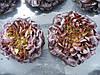 Семена салата Гоген. 1000 сем.Рийк цваан.