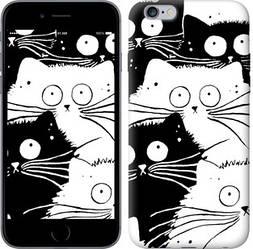 """Чехол на iPhone 6 Plus Коты v2 """"3565c-48-328"""""""