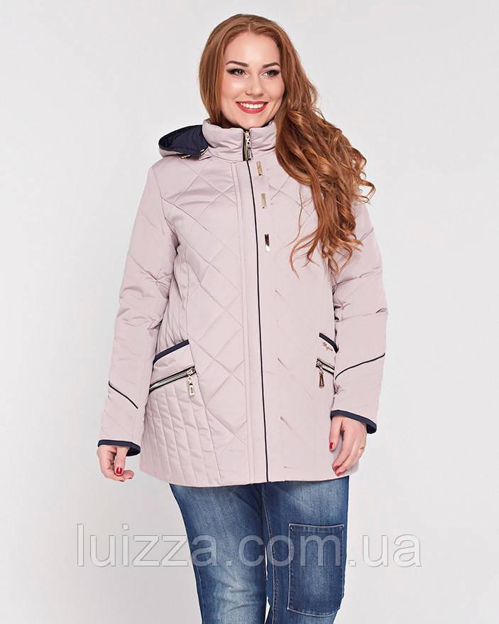 Женская весенняя куртка  50-62р  беж  50