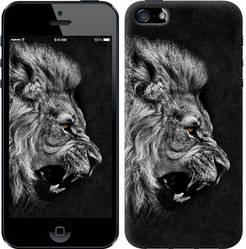 "Чехол на iPhone 5 Лев ""1080c-18-328"""