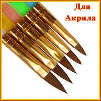 Новое Поступление: Набор Конусных Кистей для Акрила, с Прозрачной Ручкой. Код 1396