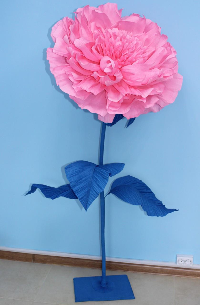 Ростовой бумажный цветок - пион