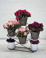 НОВИНКА! Кованая подставка для цветов Инь Янь