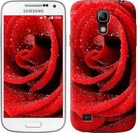 "Чехол на Samsung Galaxy S4 mini Красная роза ""529c-32-657"""