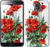 "Чехол на Samsung Galaxy S5 Duos SM G900FD Маки ""523c-62-657"""