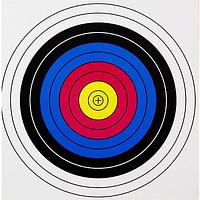 Мишень для стрельбы из лука (60x60 см) MHR /35-2