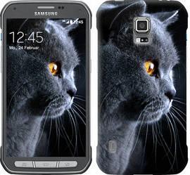 """Чехол на Samsung Galaxy S5 Active G870 Красивый кот """"3038c-364-328"""""""