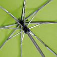 Жіночий парасольку, повний автомат FARE FARE5460-lime, фото 5