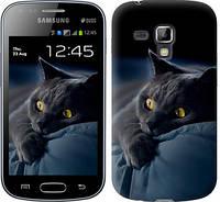 """Чехол на Samsung Galaxy S Duos s7562 Дымчатый кот """"825c-84-328"""""""