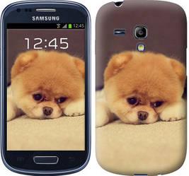 "Чехол на Samsung Galaxy S3 mini Boo 2 ""890c-31-328"""