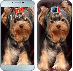 "Чехол на Samsung Galaxy A8 (2016) A810 Йоркширский терьер ""929c-614-328"""