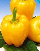 Семена перца Асти желтый