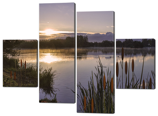 Модульная картина Озеро и камыши