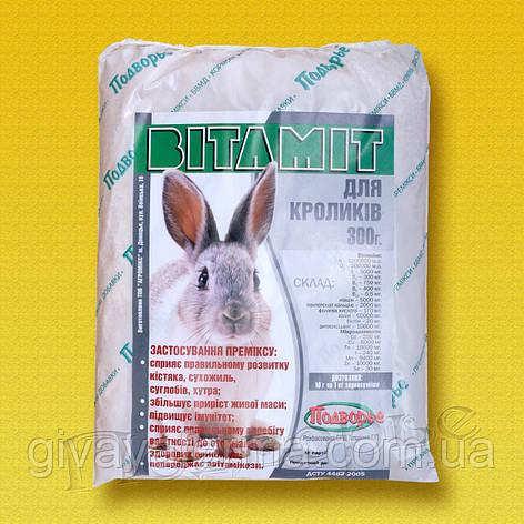 Премикс Витамит - кролик 1%, 25 кг, витамины, минералы, добавка к корму, фото 2