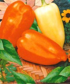 Семена перца Зоржа, фото 2