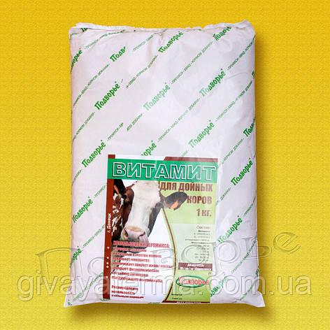 Премикс Витамит - дойная корова 1%, 25 кг, фото 2