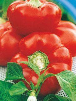 Семена перца Ратунда красная, фото 2