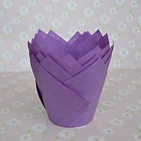 Капсула для кексов (тюльпан фиолетовый) (10 шт.)