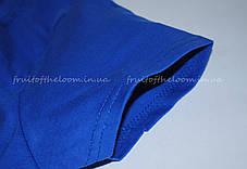 Женская Футболка Премиум Ярко-синяя Fruit of the loom 61-424-51 XL, фото 3