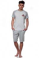 Пижама мужская с шортами Ellen MNP 017/001