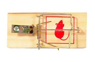 Крысоловка деревянная + металлическая защёлка (17,5х8 см)